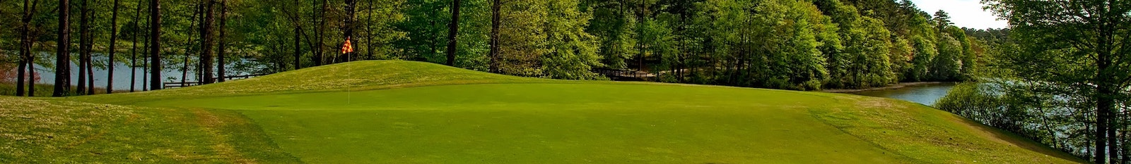 Golf green which is something an early retiree might care about.